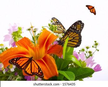 Monarch butterflies on bouquet of flowers.