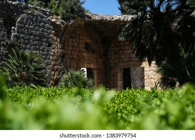 Monastery garden on the island of Lokrum, Croatia, famous filming location