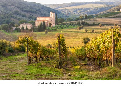 Monastery Sant'Antimo in the vineyards of Brunello, near Montalcino, Italy