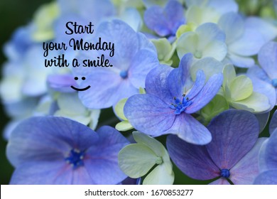 Monday inspirational quote - Start your Monday with a smile. On background of beautiful flower and petals closeup in light blue, purple and white colors. Welcoming Monday with Happy smiling emoticon.