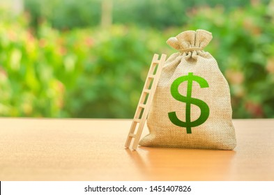 Money bag with dollar symbol and ladder. Startup and crowdfunding. Deposit and savings. Achieving the goal and the accumulation of the amount of money, take a loan. redemption and restructuring