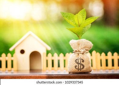 Money bag and plant growing on the top and a wooden house put on the table in the morning sunlight, The saving money or loan for buy a dream house or real estate owner in the future concept.