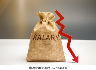 Money bag with the word Salary and arrow to down. lower salary, wage rates. demotion, career decline. lowering the standard of living. wage cuts. decrease in profits and family budget