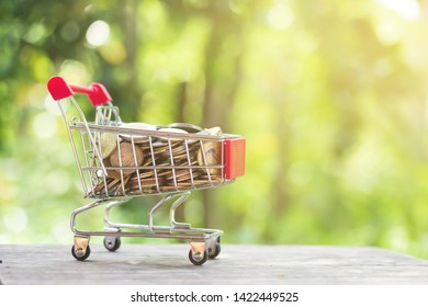 Money coin in mini shopping cart or trolley against blurred natural green background with copy space for business and finance concept