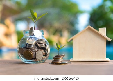 Money coin stack tree growing graph. Saving money for house. Investment Concept.