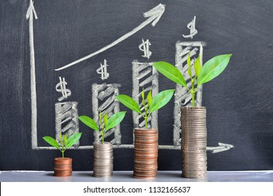 money coins saving growth up increase to high profit interest for concept investment mutual fund finance and business