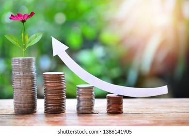 money coins saving set up to increase for concept investment mutual fund finance and business