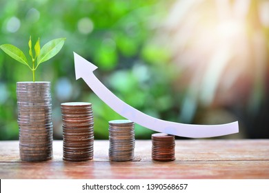 money coins saving set increase to high profit interest for concept investment mutual fund finance and business