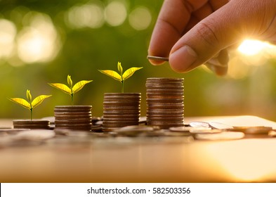 Money and financial concept,business man putting money coins like growing graph with sun light in saving money and investor insurance concept over green background