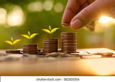 Geld- und Finanzkonzept, Geschäftsleute, die Geldmünzen einsetzen, wie die wachsende Grafik mit Sonnenlicht, um Geld zu sparen, und Investorenversicherungs-Konzept auf grünem Hintergrund