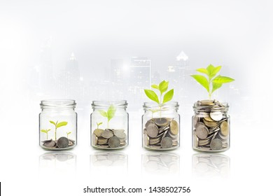 Money growing plant step with deposit coin,  seed in clear bottle on white background. investment ,bank concept
