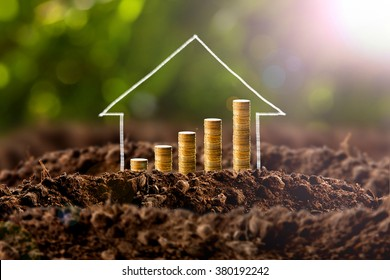 Money growing in soil , success concept.