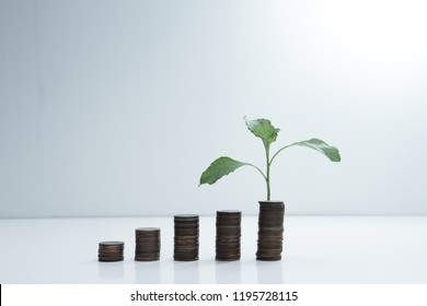 money growth business concept