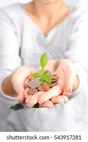 Money growth concept with coins and plant in woman hand