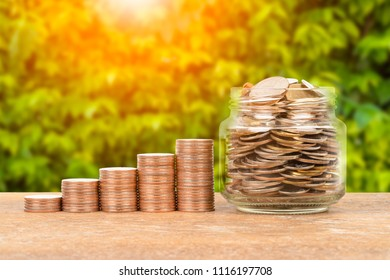 Money jar and coin stack on green tree background