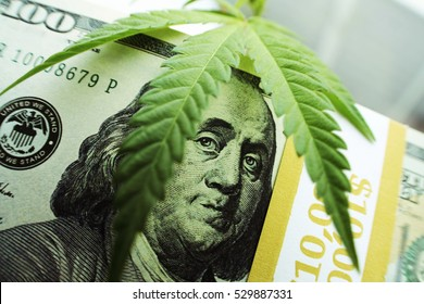 Money With Marijuana Close Stock Photo High Quality