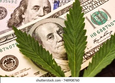 Money Marijuana. Hundred dollar bill of the USA Franklin