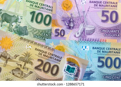 Money from Mauritania, a business background