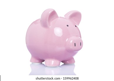 Money pig isolated on a white background