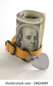 Money roll showing Benjamin Franklin's portrait with a yellow pet collar.