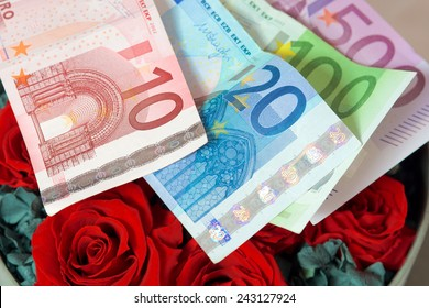 money and rose. red rose on money on white back ground.