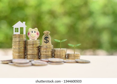 Money saving, first time asset / property buyer concept : Home model, piggy bank, dollar bags, young sprout on stacks of rising coins, depict budget planning for basic needs, family & personal expense