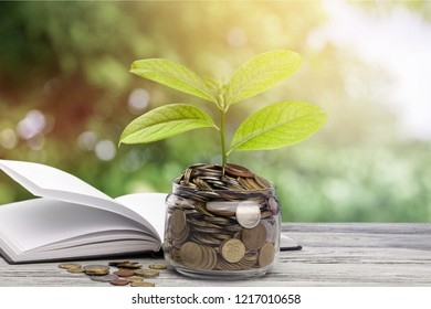 money saving growth to profit concept investment
