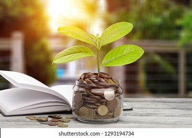 money saving growth to profit concept investment and finance business