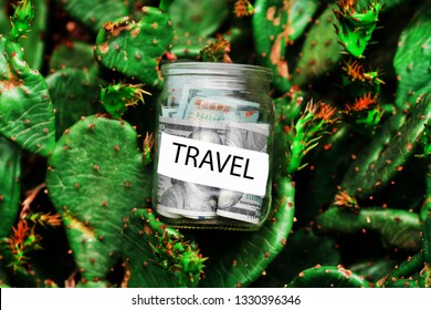 Money with savings for tourism against the background of cactuses
