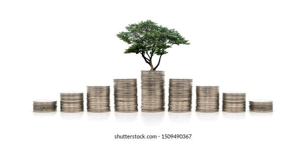 money step tree isolated Savings create a solid foundation concept