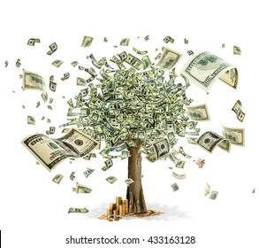 money tree on white background