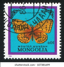 MONGOLIA - CIRCA 1986: stamp printed by Mongolia, shows butterfly, circa 1986