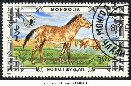 MONGOLIA - CIRCA 1986: A stamp printed in MONGOLIA  shows  a wild horses Przewalski (Equus przewalskii), series, circa 1986