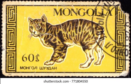 MONGOLIA - CIRCA 1987: A stamp printed in Mongolia shows cat on yellow background, circa 1987