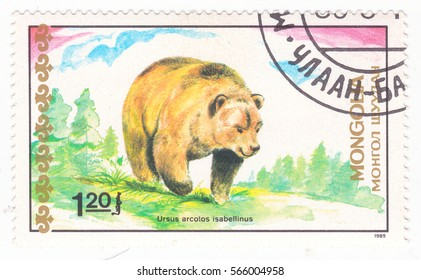 "MONGOLIA - CIRCA 1989: A stamp printed in Mongolia shows Himalayan Brown Bear (Ursus arctos isabellinus), ""Bears"" series, circa 1989"