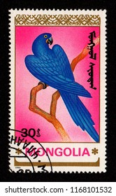 MONGOLIA - CIRCA 1990: A stamp printed in Mongolia shows an image of a hyacinth macaw (Anodorhynchus hyacinthinus).