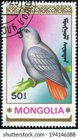 MONGOLIA - CIRCA 1990: stamp printed by Mongolia, shows parrot, circa 1990