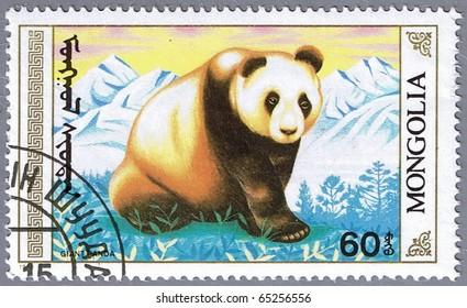 MONGOLIA - CIRCA 1990: A stamp printed in Mongolia shows an adult giant panda, series, circa 1990