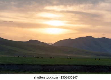 Mongolia. Landscape at sunset. Gold hour.
