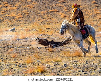 Mongolian Eagle Hunter in traditional fox fur clothing astride on horse and the eagle hunter attacks the prey on the floor in the competition of The Golden Eagle Hunter Festival at Ulgii in Mongolia