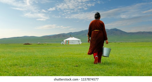 Mongolian farmer carrying bucket of milk after milking cow   in the grassland of Mongolia
