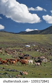 Mongolian landscape with mountain steppe under running cumulus clouds on blue sky, yurts and goats herd. Natural mountain boundary Tsagduult, western Mongolia.