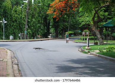 A monitor lizard (Varanus salvator) crossing the road at Lumpini park, Bangkok, Thailand. 10th May 2015
