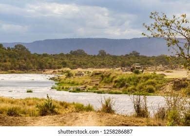 Monitoring the ungulate crossing through the Mara River. Ecotourism in Kenya, Eastest Africa
