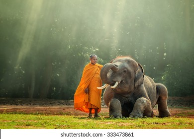 Monk and Baby Elephant