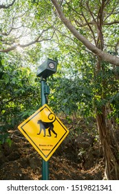 monkey beware sign and camera in park