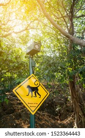 monkey beware sign in park