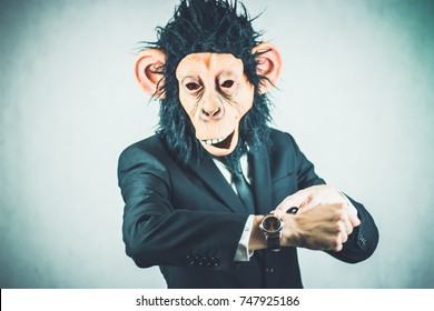 monkey business man