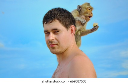 The monkey eats on the guy's shoulder. Tourist  with macaque.