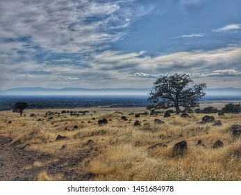 Monkey Face Loop and North Rim Trail at Upper Bidwell Park in Chico, CA. One of the biggest municipal parks in the nation.